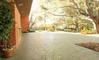 Alumni House Patio