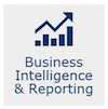 Business Intelligence & Reporting icon