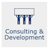 Consulting & Development icon