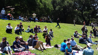 photo of One IT picnic 2014