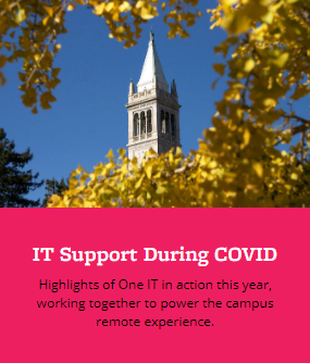 IT Support During COVID graphic